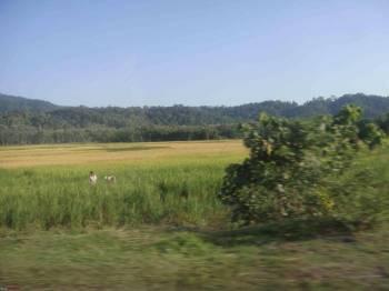 Guwahati-Shillong-Kaziranga-Tezpur-Guwahati Tour