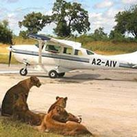 7 Days Uganda Flying Safari, Murchison Falls & Semliki Tour