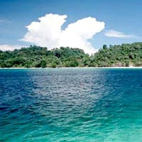 Refreshing Andaman with Baratang excursion