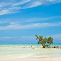 Andaman 6 Nights 7 Days Tour