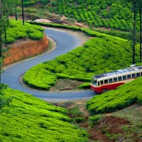 Charming Kerala Duration: 04 Nights/ 05 Days Tour