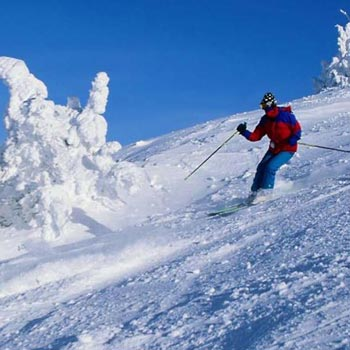 Himachal Trip for 7 Nights Tour
