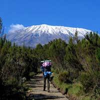 Trekking Mount Kilimanjaro Via Marangu Route Tour
