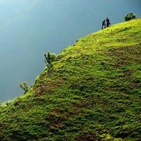 Travels In Pune - Cochin - Kerala Honeymoon Package