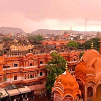 Pink City Sight Tour