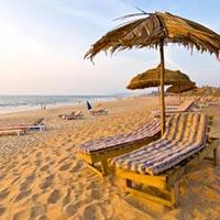 Go Goa Tour