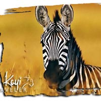 Akagera Game Drive Package