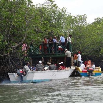 Andaman Elephant Beach Tour