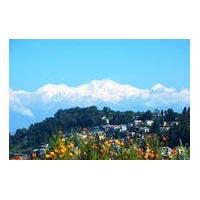 Darjeeling Economical/Affordable Tour