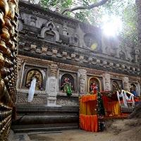 Buddha Steps With Tajmahal Tour