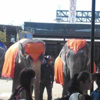 Amazing Thailand 5N/6D Tour