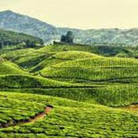 4D/3N  Darjeeling  Package