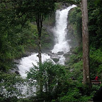 Honeymoon in Coorg from Bangalore Tour