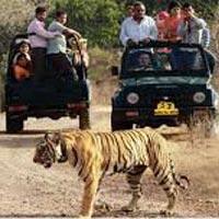 Central India Panorama Tour