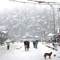 Shimla Manali - Honeymoon Paradise