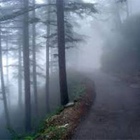 Chandigarh - Shimla - Manali - Chandigarh Honeymoon Package (4N5D)