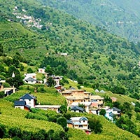 Shimla - Manali - Dharamshala - Dalhousie - ChambaSpecial Tour