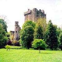 Wales & Ireland Tour (9040)