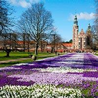 Focus on Scandinavia(6910)