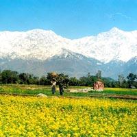 Chandigarh Shimla Manali Tour Package