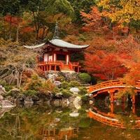 Summer Splendor of Japan Holiday Tour Package