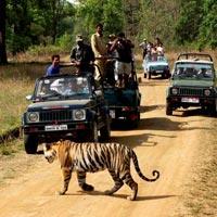 Delhi - Agra - Ranthambhore - Jaipur - Delhi Tour