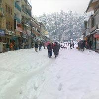 Kalka - Manali - Kalka Tour