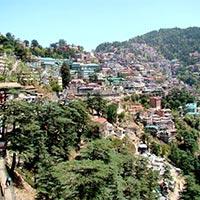 Delhi - Shimla - Manali - Delhi Tour