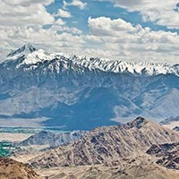 Ladakh Monasteries Tour