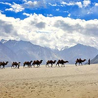 Ladakh with Nubra Valley Tour