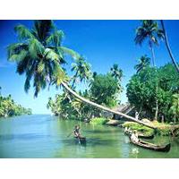 Divine Kerala Tour Packages