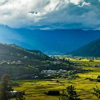 Punakha Winter Trek Tour
