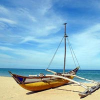 Emerald Isle - Sri Lanka Natura, Culture, Wildlife & Sailing Tour