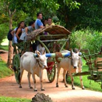 Sri Lanka Luxury Family Escape - 7 Days Tour