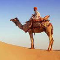 Udaipur-Jodhpur-Jaisalmer Tours (7Days6 Night)
