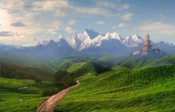 Glimpse of Kashmir 4n/5d 4n/5d