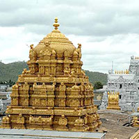 Golden Triangle Tour with Tirupati & Puttaparthy
