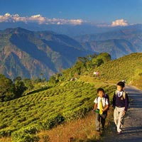Enjoy Darjeeling Kalimpong Gangtok Tours - Make Your Best Holiday With Our Special Packages