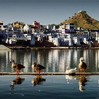 Interesting Rajasthan Tour