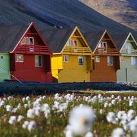Summer Icefjord Safari Tour