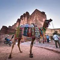Quick Rajasthan Tour