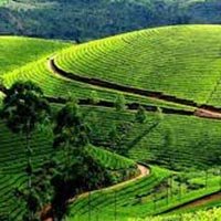 Visakhapatnam - Araku Valley Tour Package