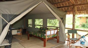 Mikumi National Park Safari Package