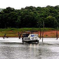 Ernakulam - Munnar - Thekkady Tour