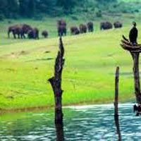 Beautiful Tour Of Kerala