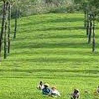 Awesome Kerala 3* Tour