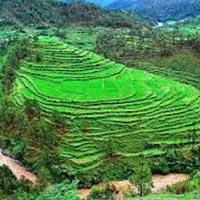 Darjeeling (Queen Of The Hills ) Tour