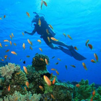 Amazing Andaman Tour (6 Nights)