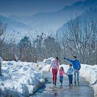 Shimla Manali Tour 4