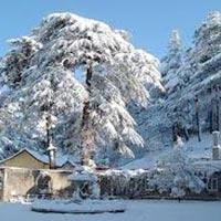 Shimla Tour 2